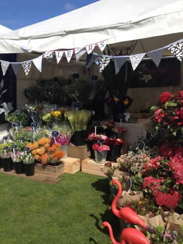 school fair, velvet lily, fete, flowers, french village flowers